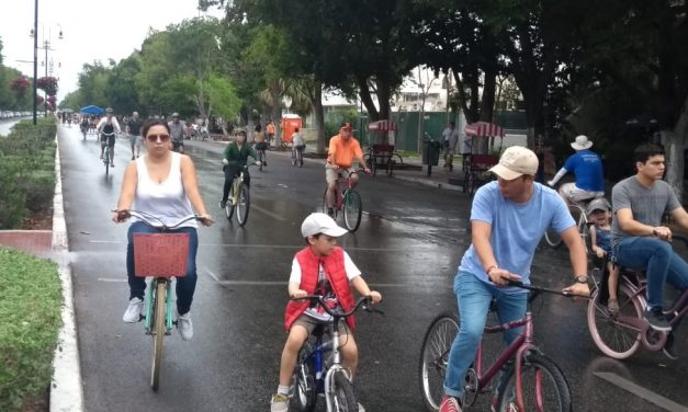 Domingo húmedo, por lloviznas, en Mérida (Video)