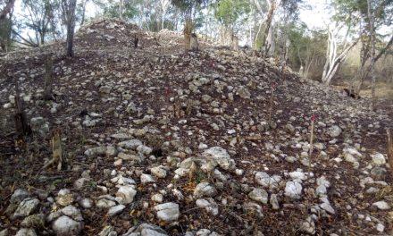 Desvelan detalles de vestigios mayas en ruta ferroviaria de Umán