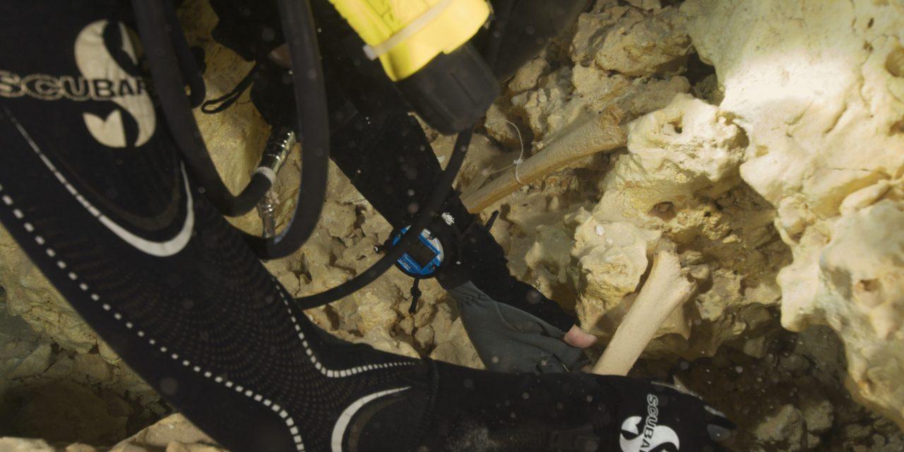 Cavernas sumergidas en Quintana Roo aportan al estudio de población de América