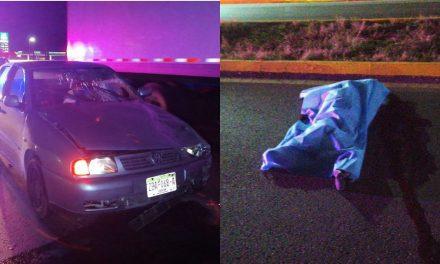 Atropellado y muerto en la carretera Mérida-Cancún