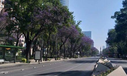 """Entra México a fase 2 frente a Covid-19; """"medidas extremas, lejos"""""""