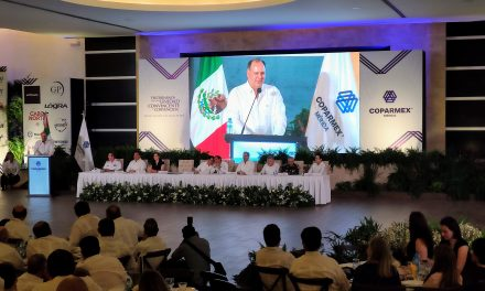 "Coparmex nacional buscará impedir ""eutanasia"" a INE"