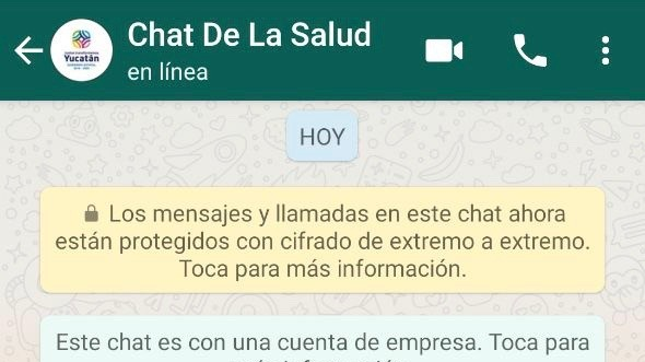 Se podrá consultar vía WhatsApp por síntomas de Covid-19