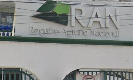 """Dalia Piña Alberto, en RAN, """"perfil empresarial y con ligas al viejo régimen"""""""