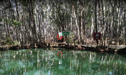 """Cierran parador turístico """"El Corchito"""", en Progreso, hasta nuevo aviso"""