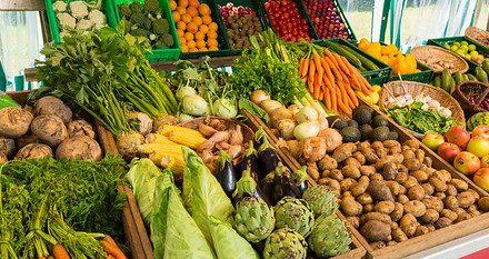 Afecta crisis sanitaria a sector agrícola, ganadero y pesquero: Greenpeace