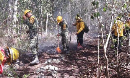 """Alertan por """"la mayor temporada de incendios forestales"""" en puerta"""