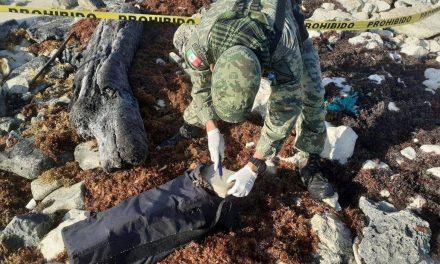 Militares encuentran mochila con cocaína en Cozumel