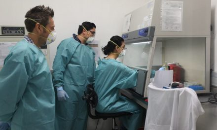 Covid-19 en Yucatán: 4 muertos más y 22 nuevos contagiados