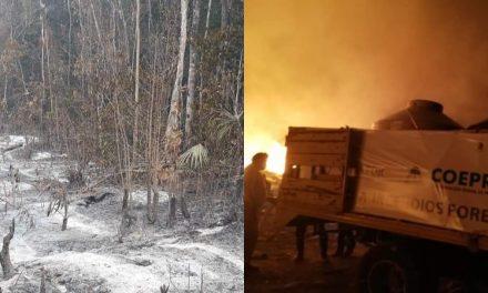 Incendios forestales en Quintana Roo casi triplican superficie afectada