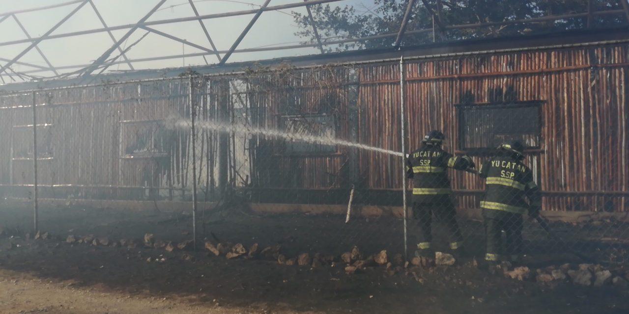 Destruye fuego palapas de parque de educación ambiental (Video)
