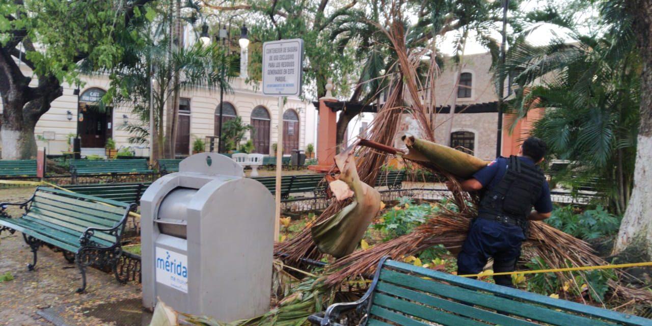 Sorpresiva tormenta trastornó centro de Mérida