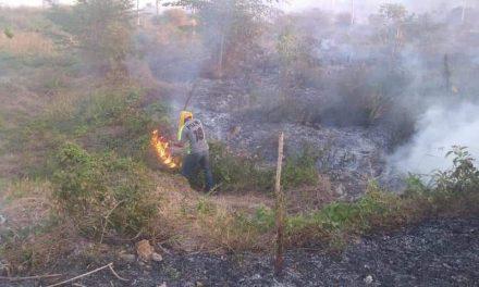 Otra emergencia en Quintana Roo: incendios forestales y sus daños