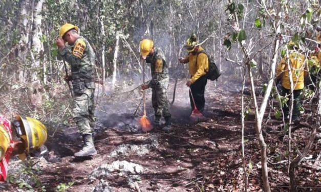 Inicia fuego en Chiquilá, se extiende a Reserva de Biósfera en Yucatán