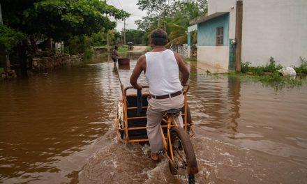 Domicilios humildes, los más afectados por lluvias y mal tiempo (Galería)