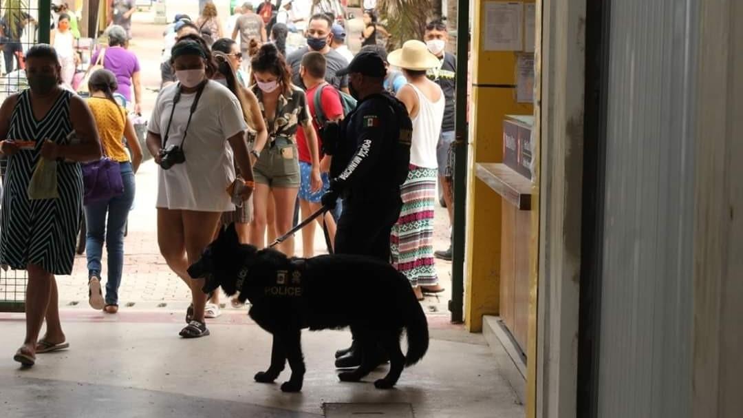 Virus disperso en Quintana Roo: 5 muertos y 60 contagiados