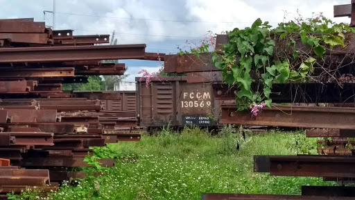 Paso de Tren Maya por Mérida 'nada definido aún'