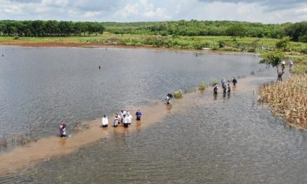 Con Declaratoria de Desastre Natural 75 municipios de Yucatán