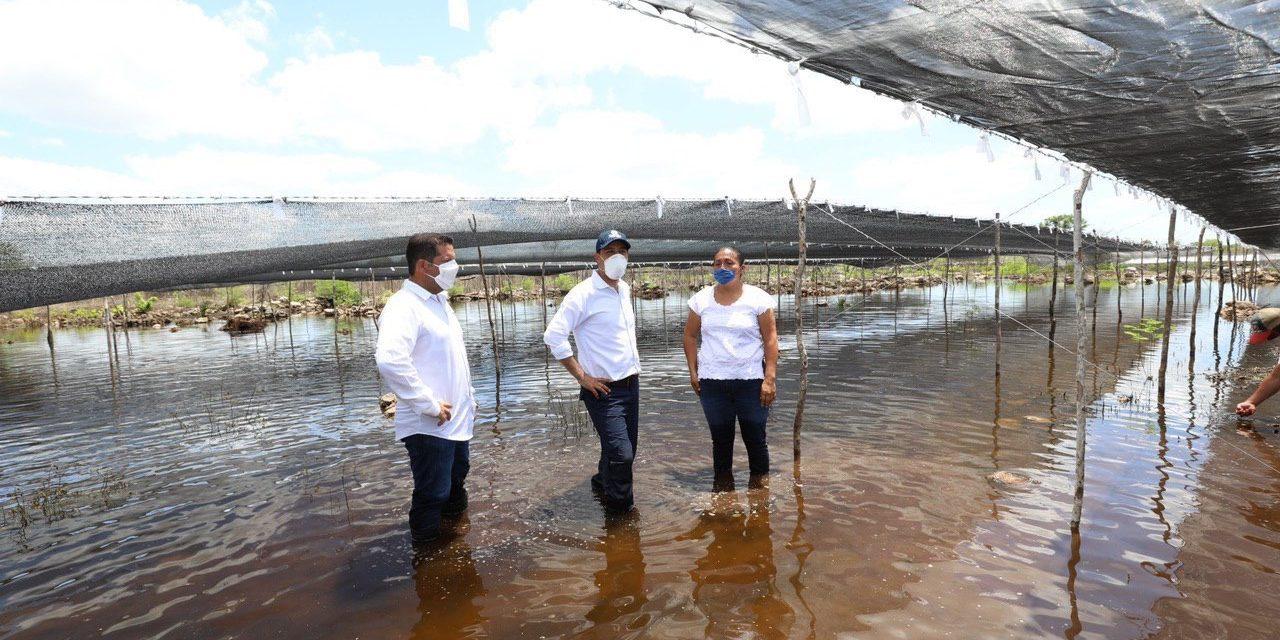Lluvias y daños en Yucatán: más de cinco mil 400 millones de pesos