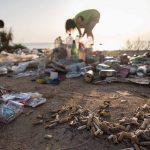 Presenta Greenpeace informe con medidas para transformar actual sistema fallido