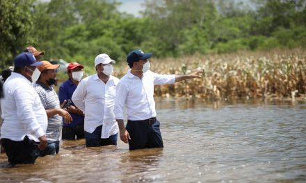Adelantan apoyos federales para productores yucatecos