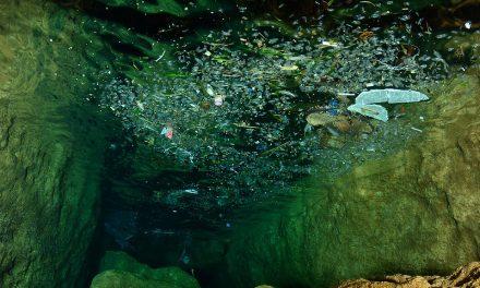 Advierten sobre plaga de plásticos en las profundidades marinas de Europa
