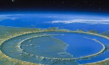 La vida se recuperó de forma pronta tras impacto de asteroide en Chicxulub