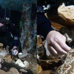 Mina de ocre más antigua de América, bajo suelo del Caribe Mexicano