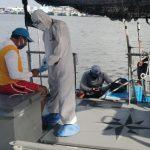 Rescatan a pescadores con lancha descompuesta al noroeste de Progreso