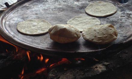 """Día de los Pueblos Indígenas: """"Atrévete a tortear"""", foro que promueve esta práctica maya"""