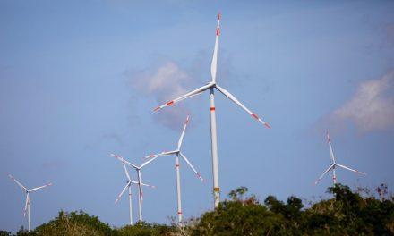Yucatán, con casi 50 por ciento de consumo de energías limpias