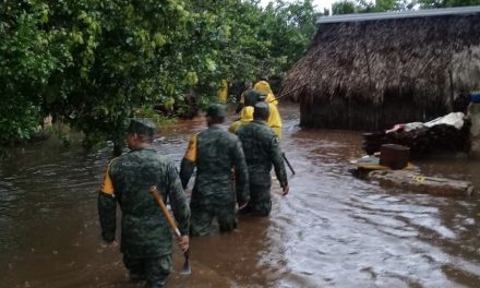 """Tormenta tropical """"Cristóbal"""" colmó mantos freáticos y rebosaron"""
