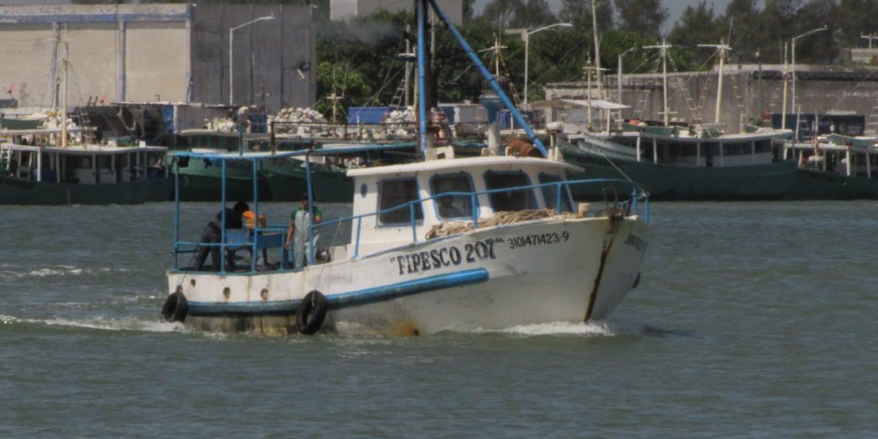 Retoman censo de embarcaciones en Progreso, tras matrículas clonadas