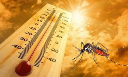 Mayor propagación del dengue y otros males, acompañarán a Covid-19