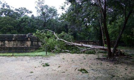 """Afectaciones de tormenta tropical """"Gamma"""" alcanzaron a Chichén Itzá"""
