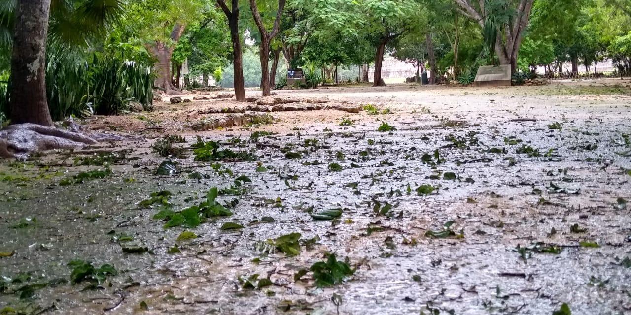 """Cierre temporal de ocho paradores de Cultur por huracán """"Delta"""""""