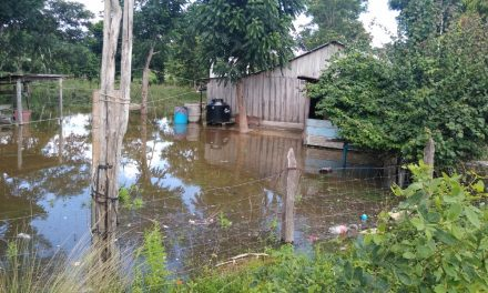 Comienzan inundaciones en sur de Quintana Roo por lluvias de frente frío (Galería)