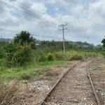 Tren Maya debe generar desarrollo sin cinturones de miseria