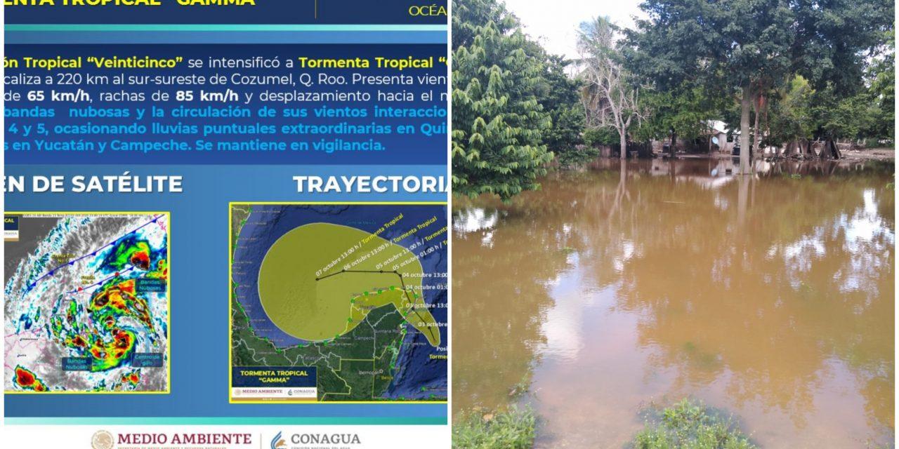 """Rápida evolución de Tormenta Tropical """"Gamma"""" frente a Caribe Mexicano"""