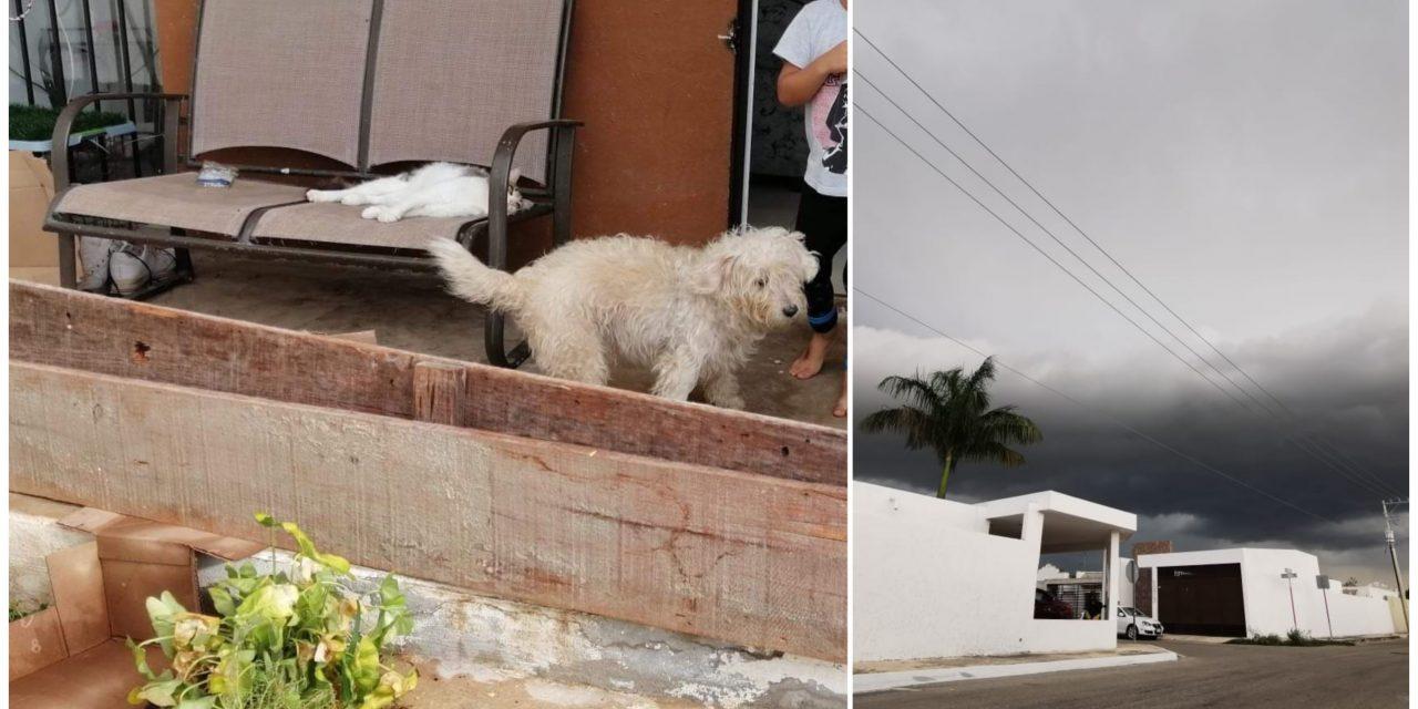 """Zozobra en fraccionamiento Las Américas, ahora por huracán """"Zeta"""""""
