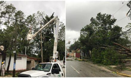 Miles de usuarios en Quintana Roo y Yucatán siguen sin electricidad