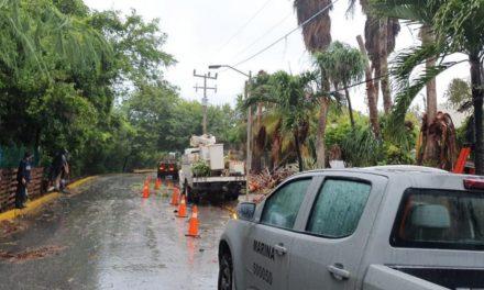 """Fallas y suspensiones de electricidad a 182 mil 301 usuarios por """"Gamma"""""""