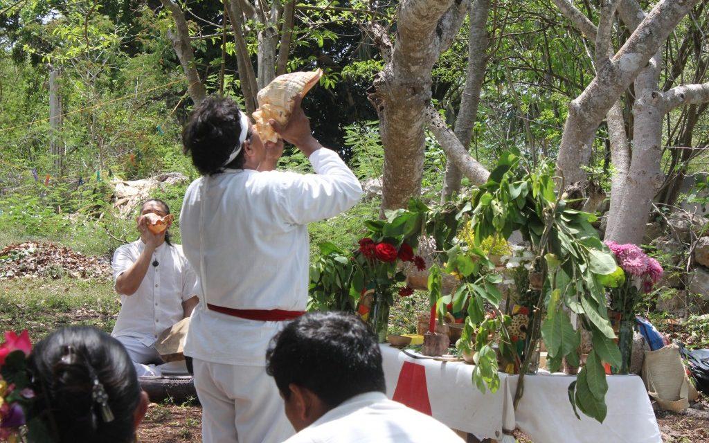 La medicina tradicional también hace frente al Covid-19