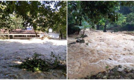"""""""Eta"""": el más mortífero y dañino de la temporada de huracanes 2020"""