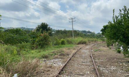 Activismo social frena nuevas obras del Tren Maya en Campeche