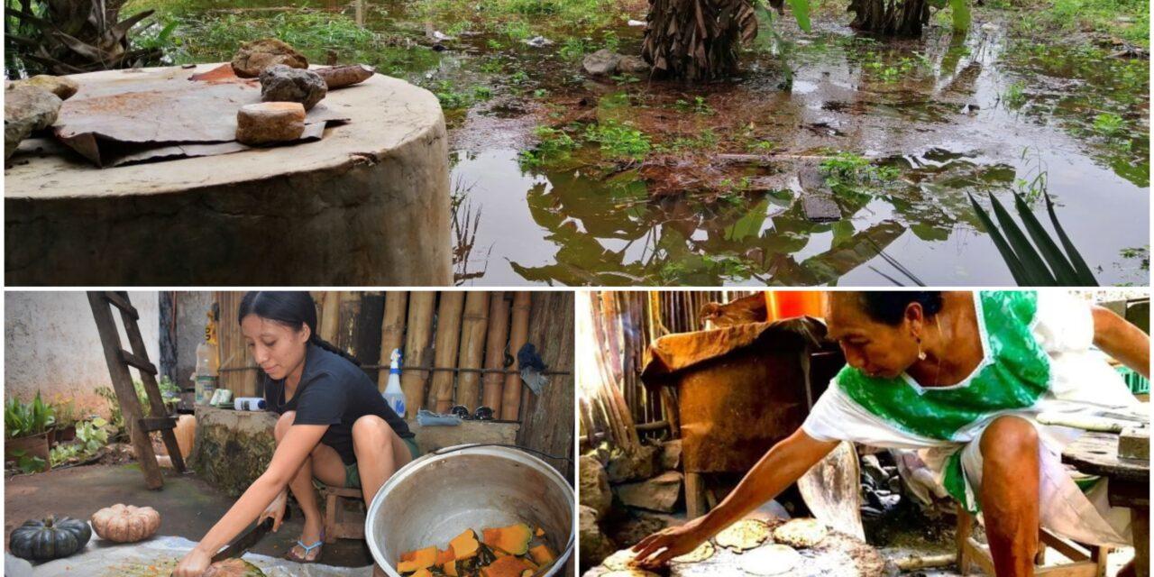 Navidad para familias campesinas en Yucatán ¿La peor que han vivido?