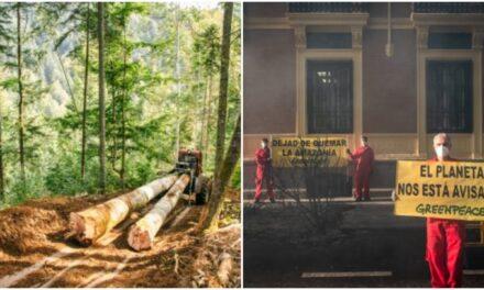 Hace Greenpeace balance de 2020; lamenta insuficiencias en tema climático