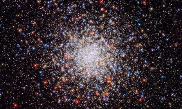 Prepara tu lista de deseos… y milagros: esta noche, lluvia de estrellas de la virgen de guadalupe