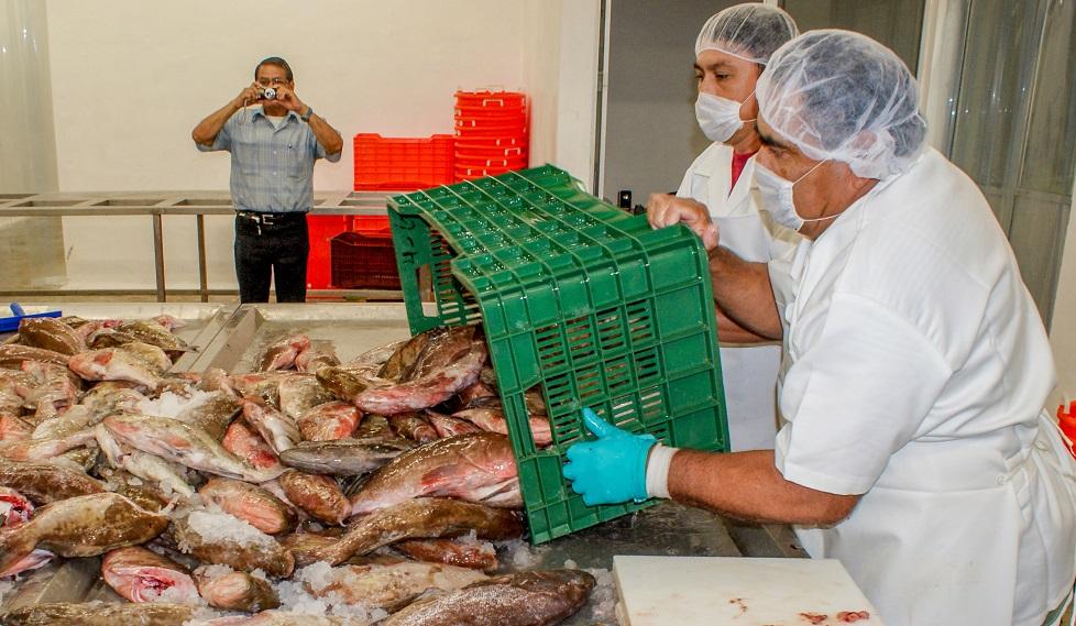 Inestabilidad política en EU agrava freno a exportaciones pesqueras de Yucatán