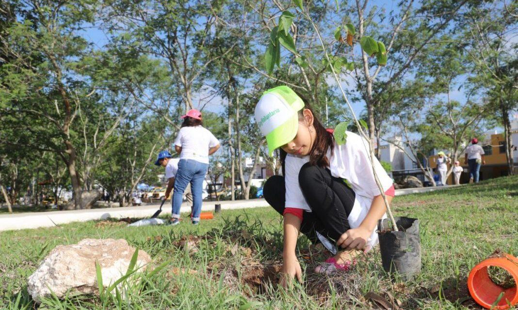 Mérida, resiliente y sustentable: Plan y Plataforma de acción climática